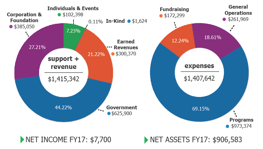 cape-fy17-financials-pie-charts