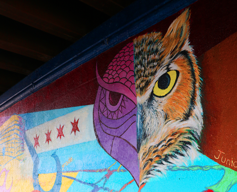 CAPE North-Grand Mural Owl Detail