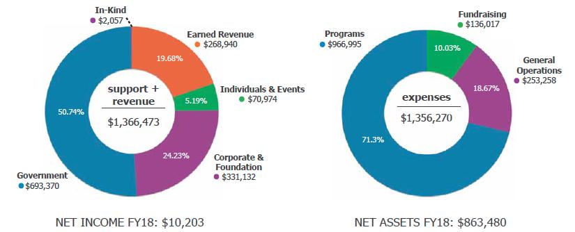 cape-fy18-financial-charts